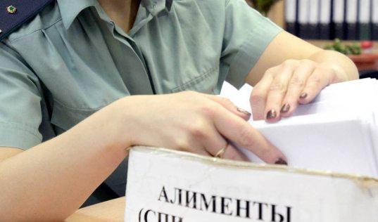 Ради выгодной продажи квартиры в Сочи мужчина выплатил алименты дочери