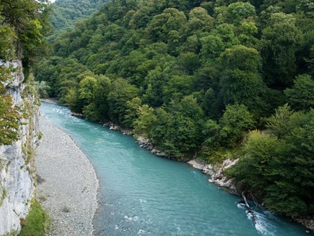 В Абхазии обнаружили мертвым российского туриста